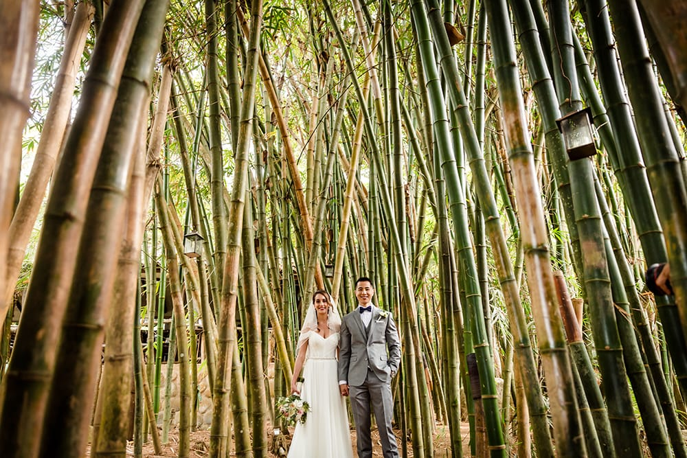 Bride and groom hold hands as they stand surrounding by palm trees at their tropical beach wedding