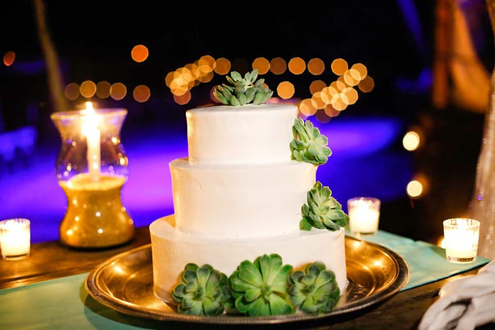 Classic white wedding cake with succulents for destination wedding by Adventure Weddings