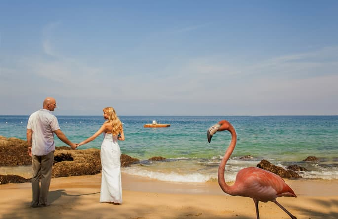 Flamingos at Destination Wedding