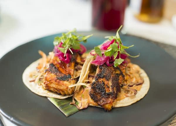 Sea Bass Tacos